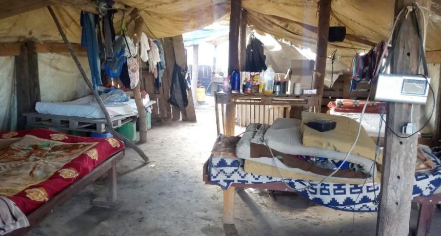 Trata de personas: Gendarmería rescató a 76 trabajadores agrícolas en el Chaco