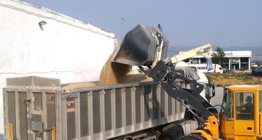 El Ministerio de Transporte reglamentó la tarifa de referencia en 22.5% para los servicios de transporte automotor de cargas de cereales, oleaginosas y derivados