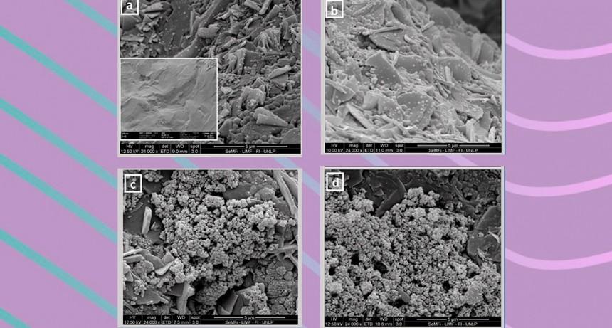 Ensayan la eficacia de administrar medicamentos en vehículos nanométricos para tratar osteoporosis y osteoartritis