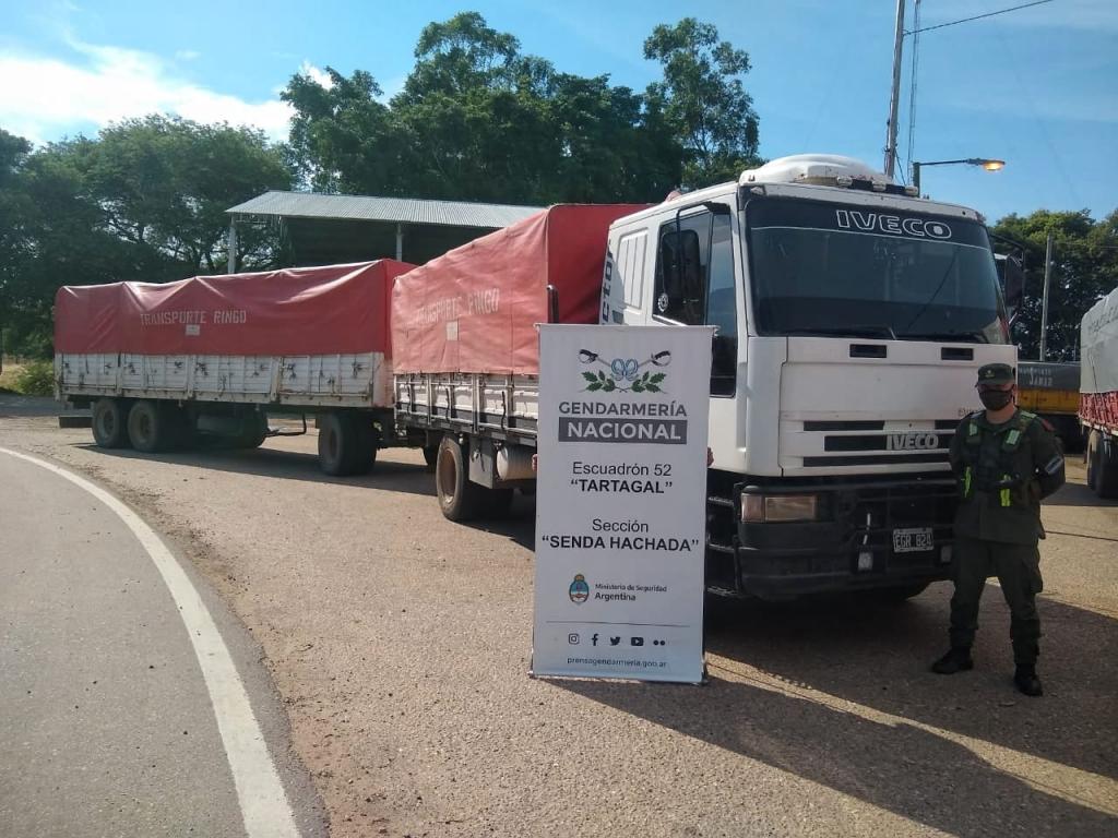 Gendarmería Nacional incautó 240 toneladas de maíz y 30 toneladas de soja ilegales