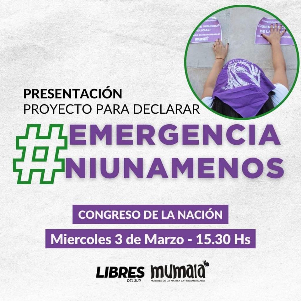 Proyecto para Declarar La #EmergenciaNiUnaMenos en todo el territorio Nacional.