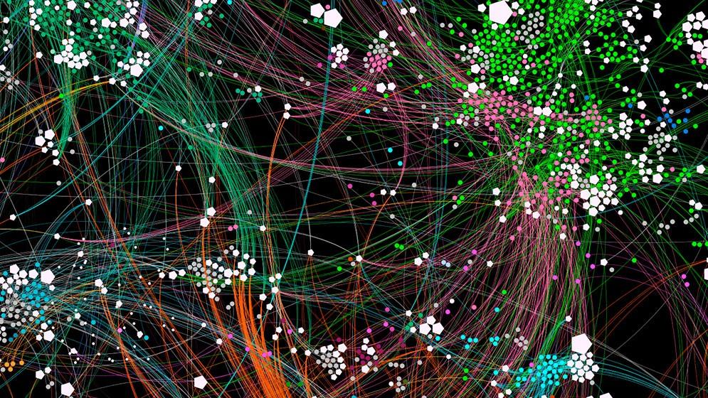 Obtienen el primer perfil temporal de alta resolución de las interacciones entre bacterias y virus en un ecosistema abierto