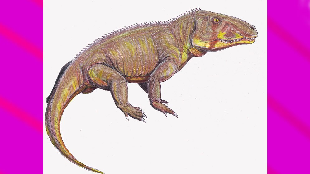 Descubren una nueva especie de reptil de la India de 240 millones de años de antigüedad