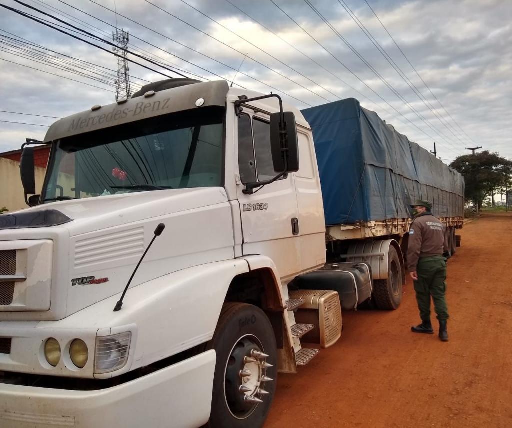 Contrabando de granos: la Gendarmería decomisó 35 toneladas de soja y maíz en Corrientes