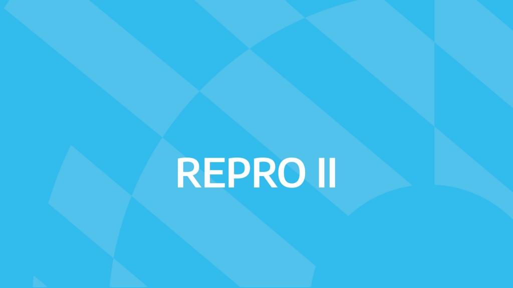 Ampliación del REPRO 2 y del Programa de asistencia al trabajo independiente para mitigar los efectos de la segunda ola de COVID-19