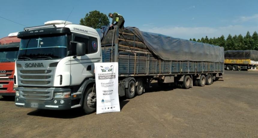 Contrabando de granos: la Gendarmería incautó casi 200 mil kilogramos de soja