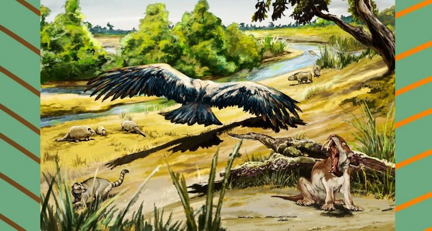 Un equipo de investigación del CONICET logra datar faunas del Mioceno tardío-Plioceno