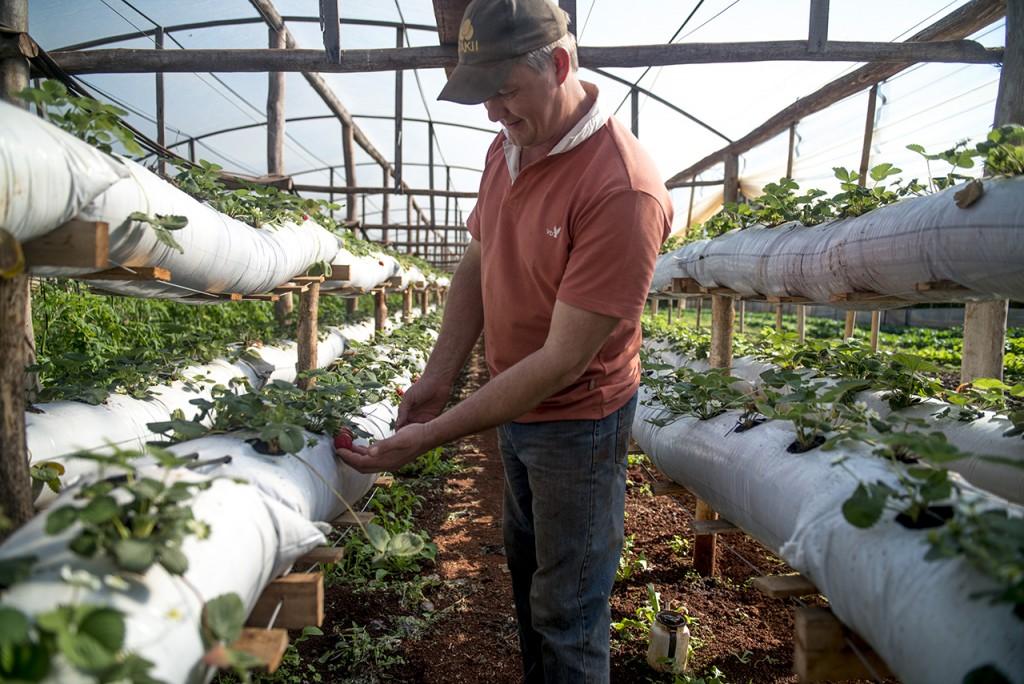 Créditos para la Agricultura Familiar por $500 millones