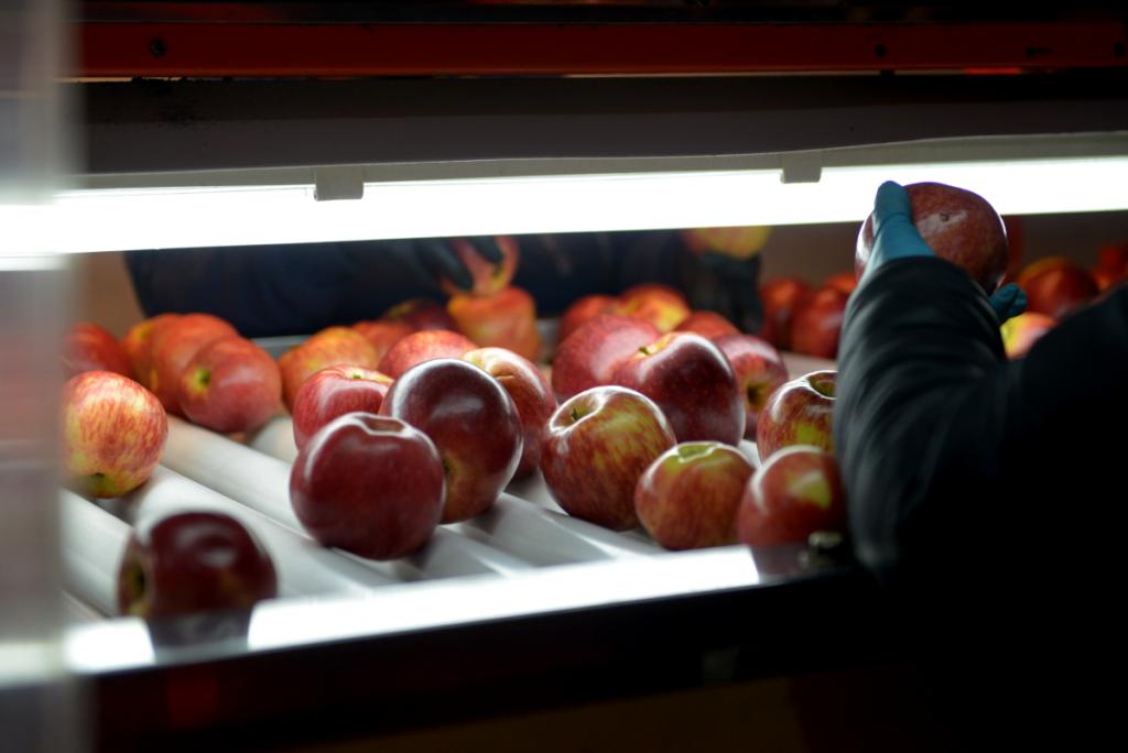 Nuevas capacitaciones para PyMEs de alimentos