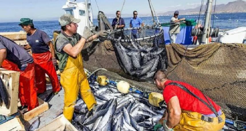 Récord histórico de crecimiento del sector pesquero nacional