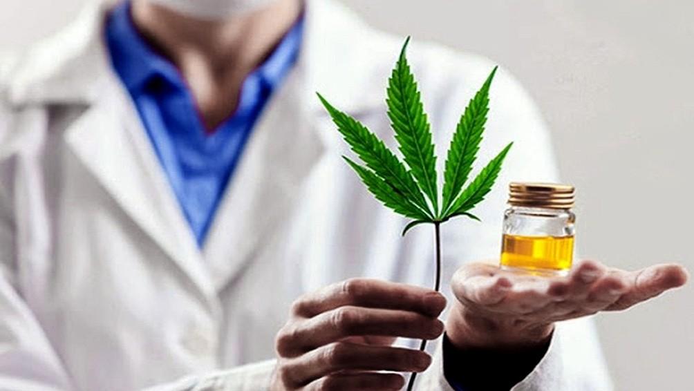"""Matías Kulfas, sobre el cannabis medicinal: """"Tenemos todo para tener una industria de calidad, que dé soluciones y buenas fuentes de trabajo"""""""