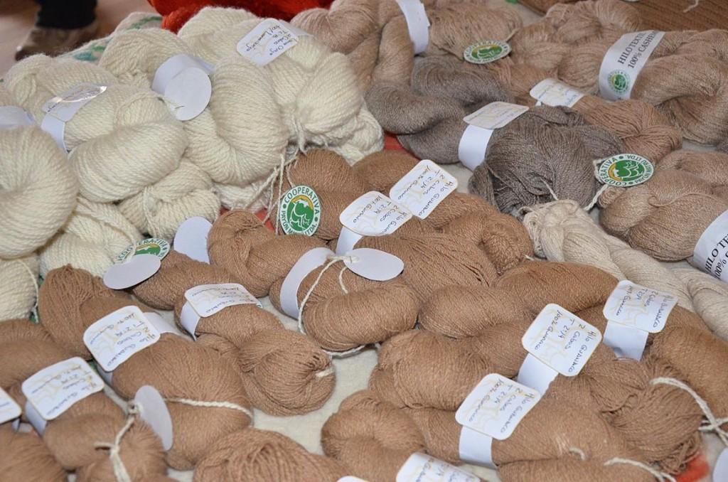 Científicos y científicas del CONICET promueven un uso sustentable de la lana de guanaco