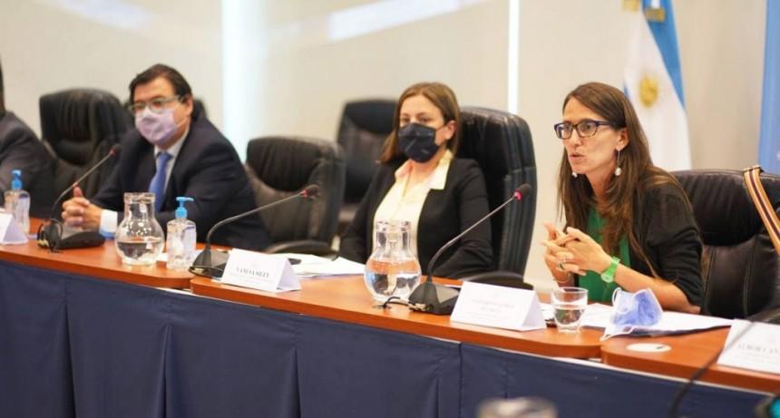 Se presento el proyecto de Comités Mixtos en el ámbito laboral