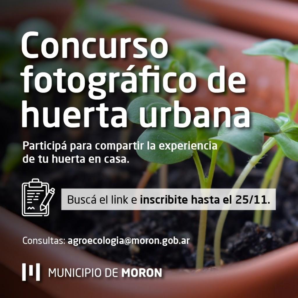 Concurso de fotografía sobre huertas urbanas lanzado por el Municipio de Morón